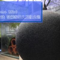 Google Home Mini 開箱:3 分鐘教你安裝及設定方法 智能家居入門級之選